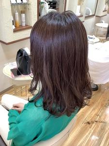 brown×violet